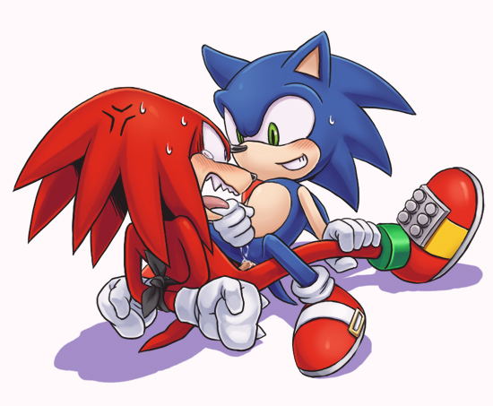 amy 3 rose sonic & Cash the fox and the hound 2